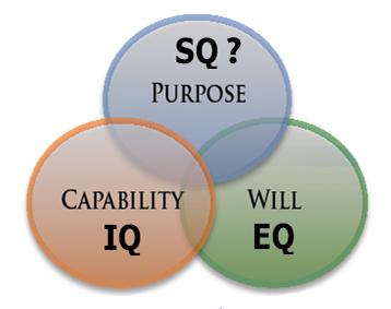 IQ-EQ-SQ_question